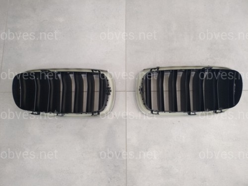 Решетка Радиатора Ноздри BMW X5 F15